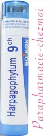 harpagophytum posologie